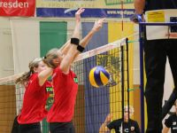 Dippold-Volleyball Turnier 2015